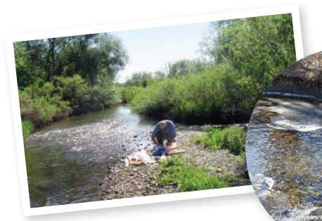 that a potential contamination problem could occur, not an indication 3 Longmont Water Quality Report 303.651.8416