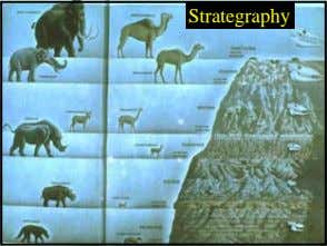 Strategraphy