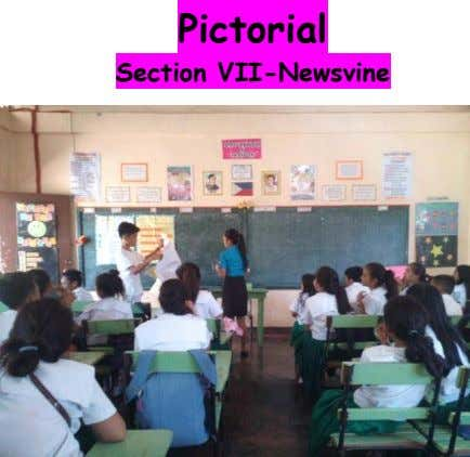 Pictorial Section VII-Newsvine
