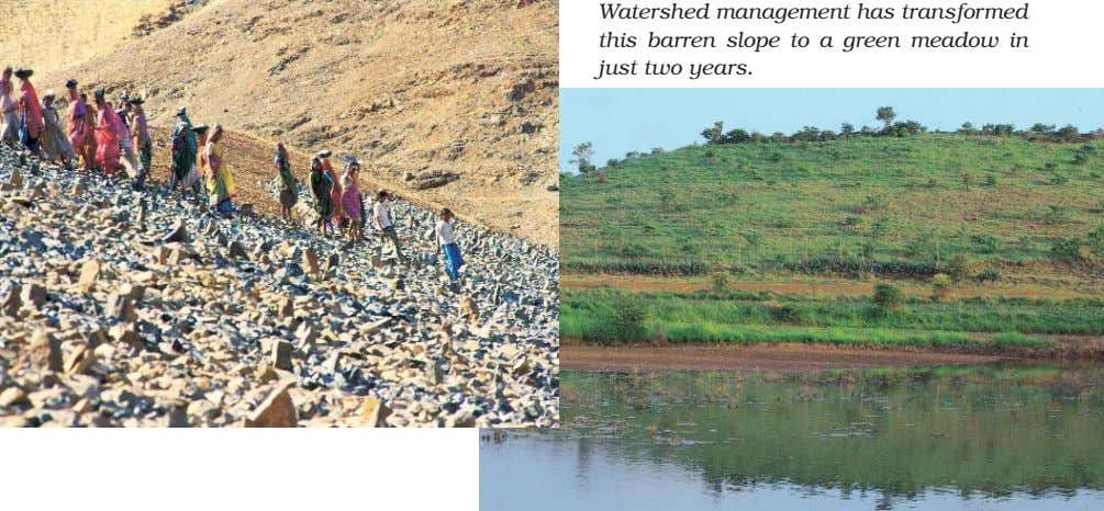 Watershed management has transformed this barren slope to a green meadow in just two years.