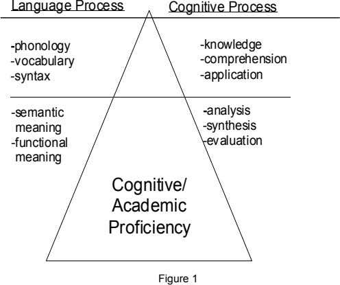 Language Process Cognitive Process -phonology -knowledge -vocabulary -comprehension -syntax -application -semantic