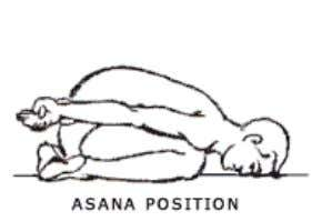 joints free and relaxed.   VAJRASANA YOGAMUDRA (Type 1) Posture This Asana is performed in Vajrasana