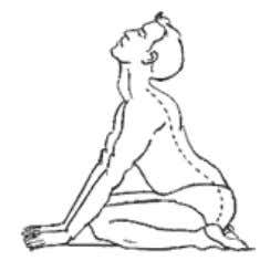 Asana only after consulting some Yoga experts. JANUHASTASANA Posture Pre position Procedure In this asana the