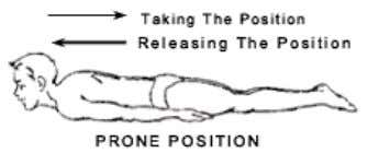 1 2 3 Posture Pre position Procedure Position Releasing Duration Internal Effects The shape of the