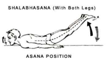 strains should be avoided.   SHALABHASANA (Complete) Posture Shalabh means 'locust' as the position of