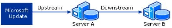 see Choose a WSUS Management Style . WSUS Server Hierarchy This type of configuration is useful