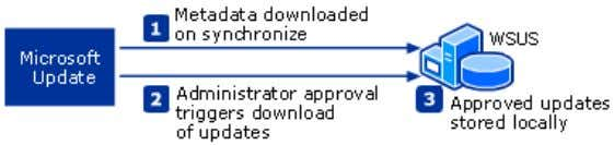 bandwidth and disk space. Deferred Downloads of Updates If you have a chain of WSUS servers,