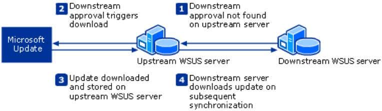 the chain. Deferred Downloads Using Multiple WSUS Servers If you chose to store updates locally during
