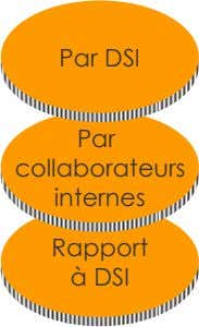 Par DSI Par collaborateurs internes Rapport à DSI