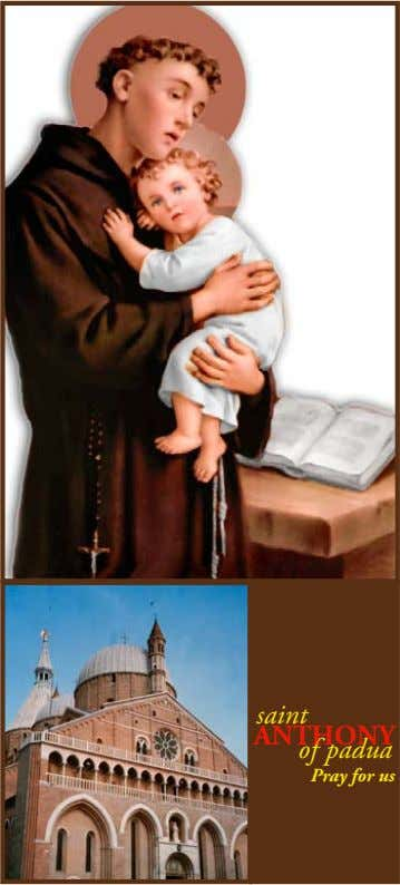 saint ANTHONY of padua Pray for us