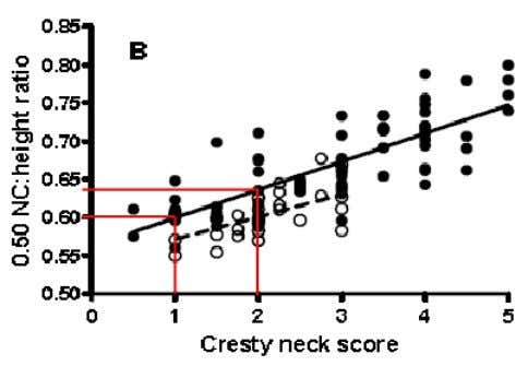 optimal (CNS 1,2) >0,65 obese (CNS 3,4,5) The left image shows how to perform the measurements