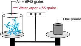 Air = 6945 grains Water vapor = 55 grains One pound