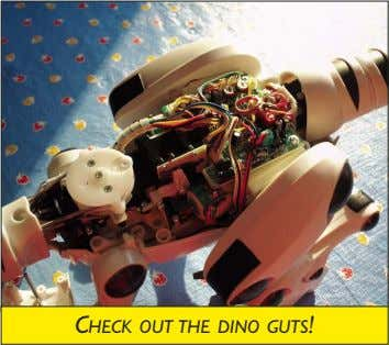 CHECK OUT THE DINO GUTS!