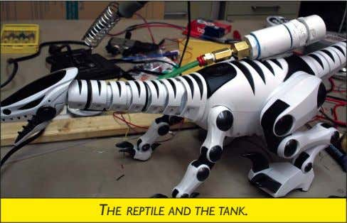 THE REPTILE AND THE TANK.