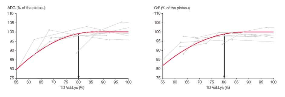 Figure 3: Effect of TD Val:Lys ratio on ADG and G:F The compilation of the data