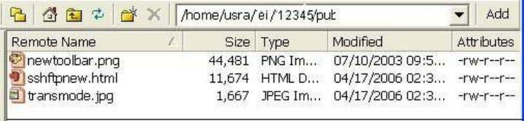 of files and folders within your Web directory on the server: © University of Delaware Information