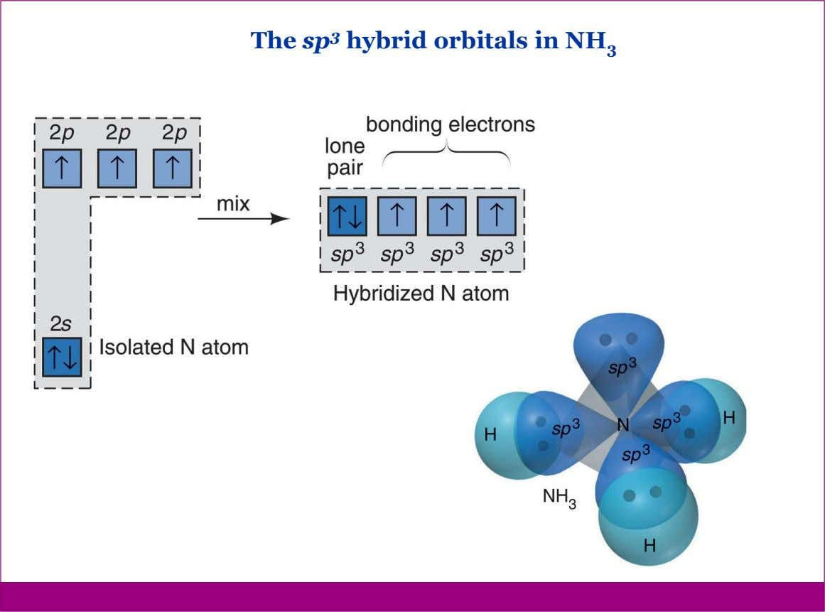 The sp 3 hybrid orbitals in NH 3