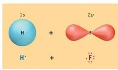 of orbitals in a molecule of hydrogen fluoride: Orbital diagram of valence electron 1s H 2s