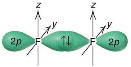  The space formed by overlapping of orbitals has a maximum capacity of two electrons that
