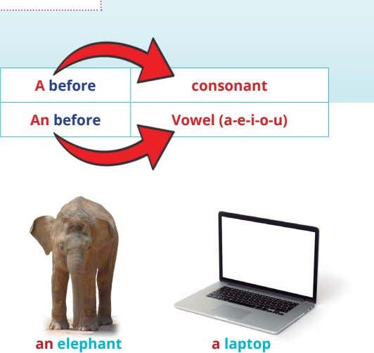 A before consonant An before Vowel (a-e-i-o-u) an elephant a laptop