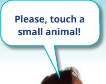 / an – es un … Example: Please, touch a small animal! What is it? It's