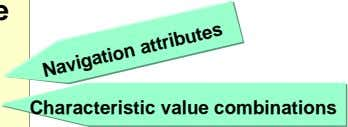 Characteristic value combinations Navigation attributes