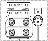 OUTPUT VIDEO AUDIO INPUT