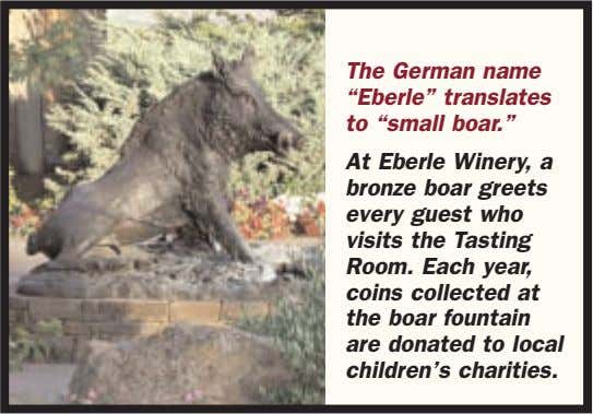 "The German name ""Eberle"" translates to ""small boar."" At Eberle Winery, a bronze boar greets"