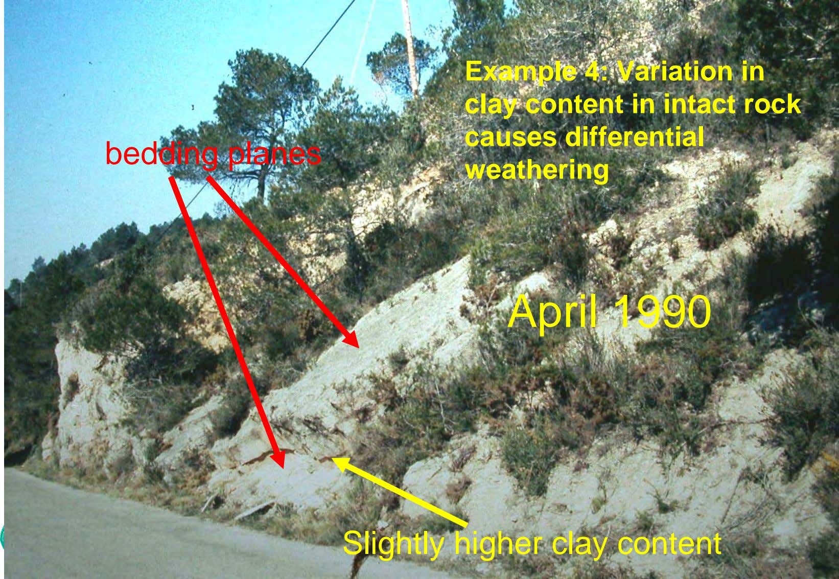bedding planes Example 4: Variation in clay content in intact rock causes differential weathering April