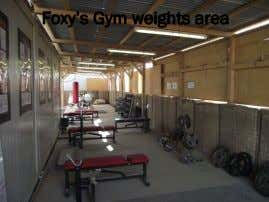"Foxy""s Gym weights area"