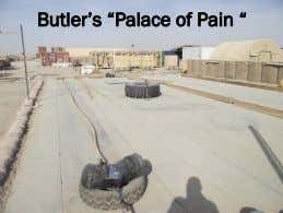 "Butler""s ""Palace of Pain """