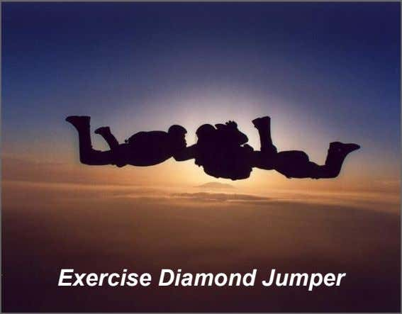 Exercise Diamond Jumper