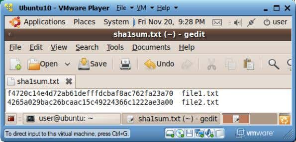 "ut lines of the last step into this file. Save the file. 6. Run ""sha1sum -"