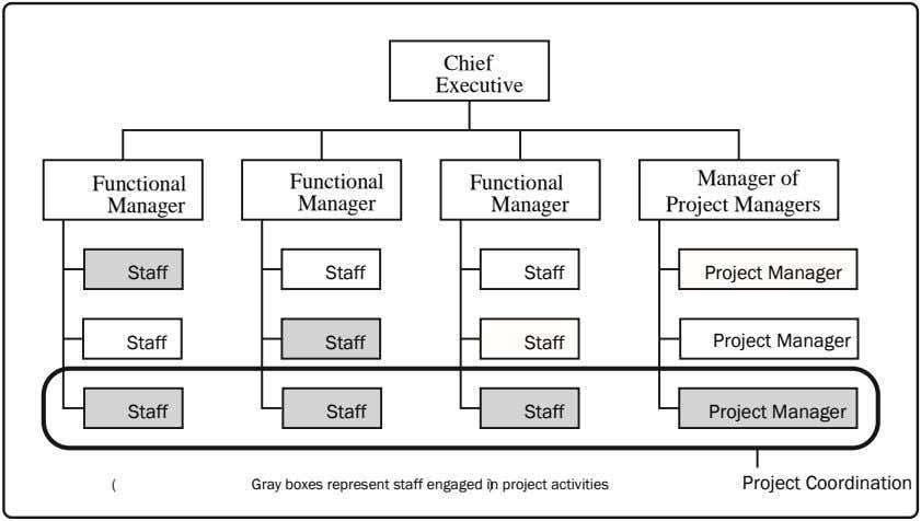 Chief Executive Functional Functional Manager of Functional Manager Manager Manager Project Managers Staff