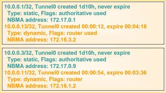10.0.0.1/32, Tunnel0 created 1d10h, never expire Type: static, Flags: authoritative used NBMA address: 172.17.0.1