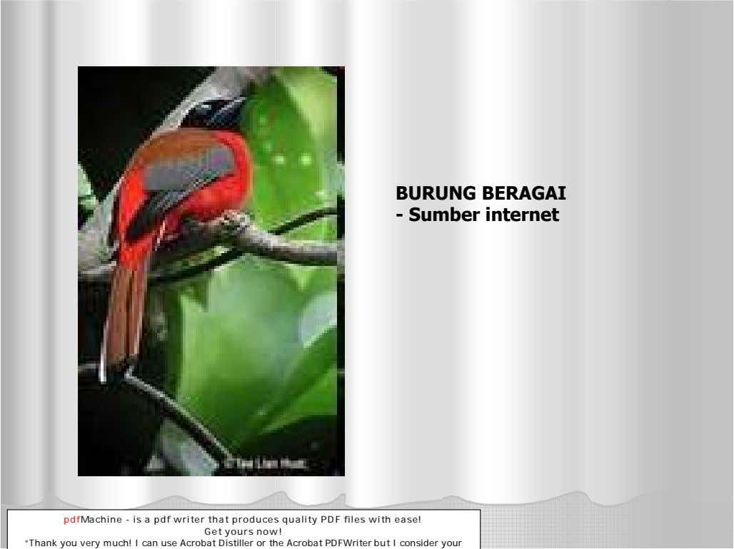 BURUNG BERAGAI - S umber internet pdfMachine - is a pdf writer that produces quality