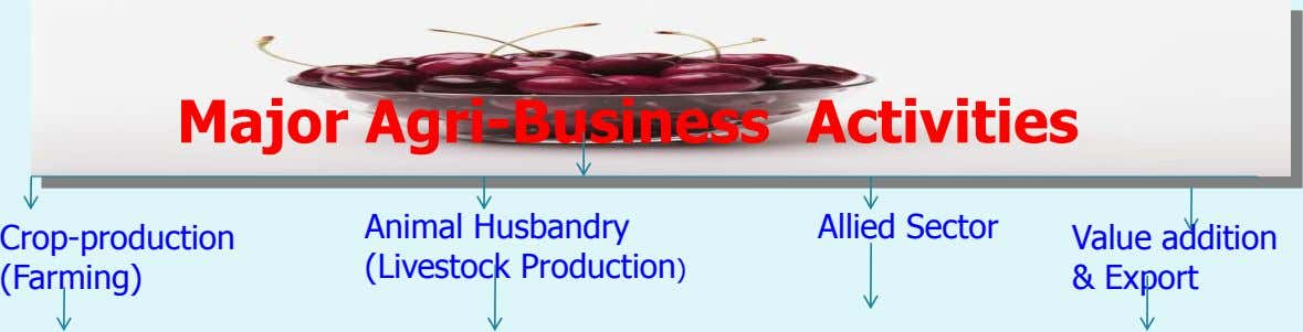 Major Agri-Business Activities Animal Husbandry Allied Sector Crop-production Value addition (Livestock Production)