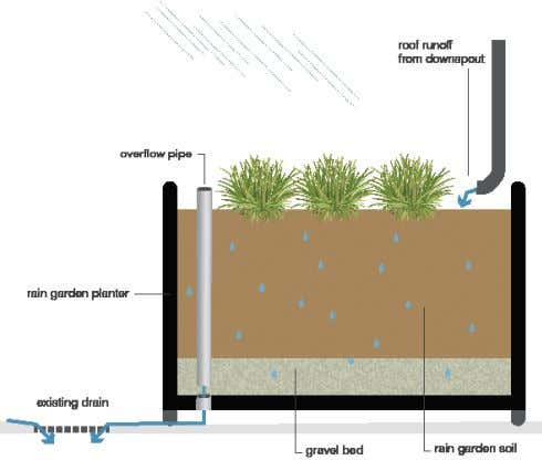 (see Planning and Design below) and in most soil types. Rain garden planter Typical domestic rain