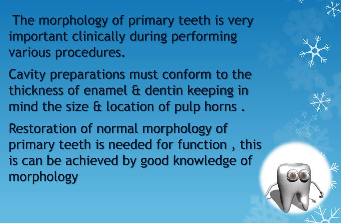 The morphology of primary teeth is very important clinically during performing various procedures. Cavity preparations