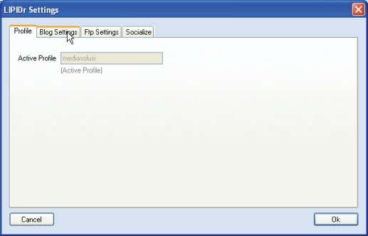 ditampilkan di Active Profile . 4. KliK blog Settings . Gambar 3.11 Tab Profile di window