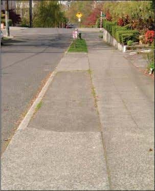 Commercial landscape treatments that include street trees. Residential street without street trees Residential street