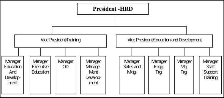 President -HRD Vice President/Training Vice President/Education and Development Manager Manager Manager Manager