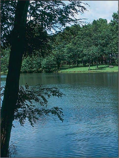 water mask vehicular and mechanical equipment noises. Lakes provide visual relief and recreational opportunities.