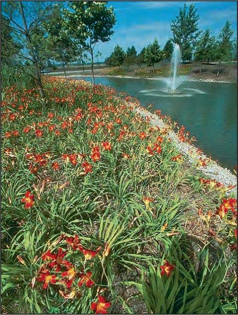 - Help reduce the demand for potable water resources. Fountains provide enjoyment and mask undesirable noise.