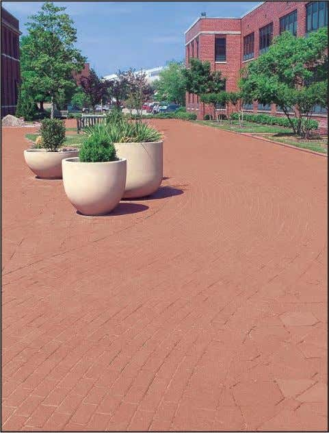 materials for durability and compatibility with desired use. Pavement patterns and planters direct pedestrian circulation