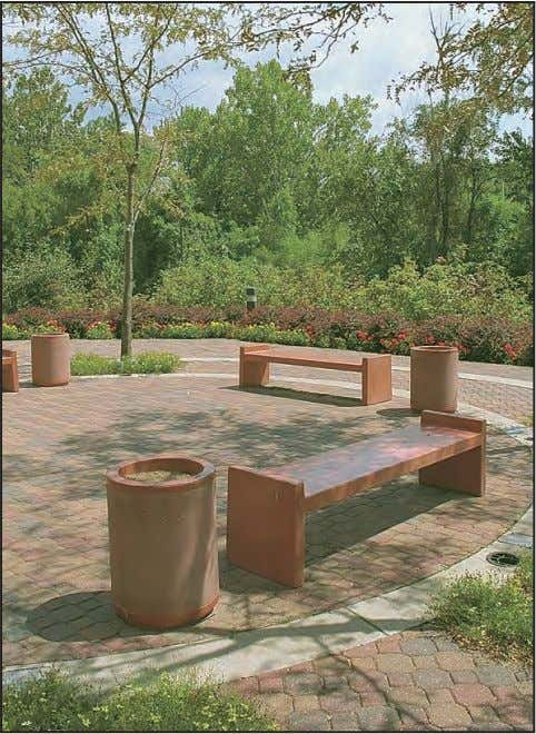 effect on the overall appearance of the installation. Achieve visual continuity by selecting site amenities that