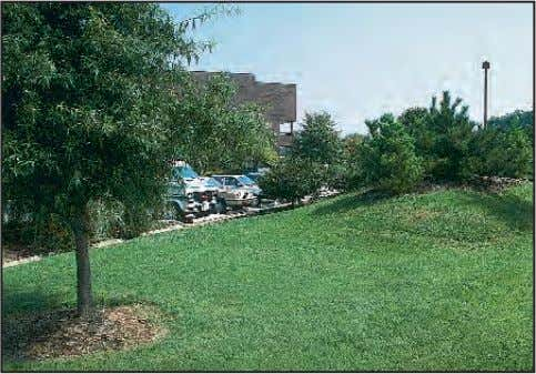 as well as help define vehicular and pedestrian circulation. Earth berms effectively screen parking areas from