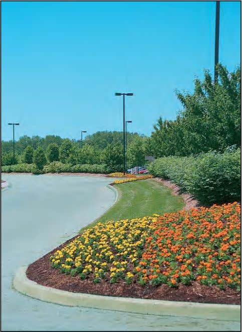 effective in articulating primary vehicular traffic routes. The use of annuals is an attractive and effective