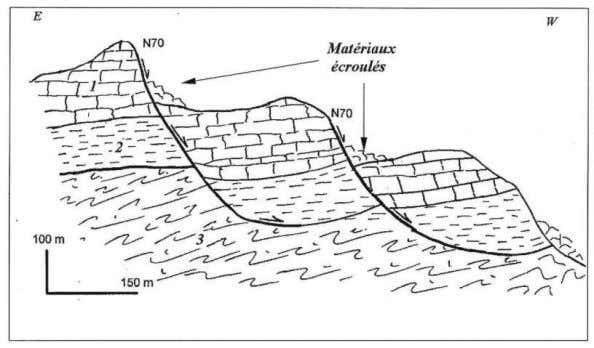caused falls of limestone blocks from an old landslide scar. Fig. 7 – Coupe géologique au