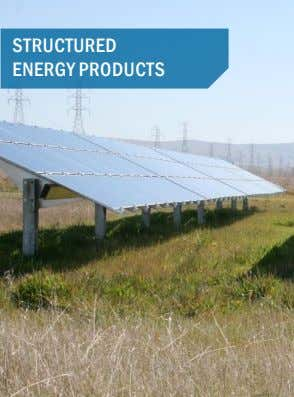 STRUCTURED ENERGY PRODUCTS